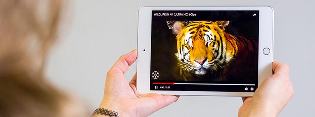 آیپد مینی اپل 7.9 اینچ 64 گیگابایت 4جی
